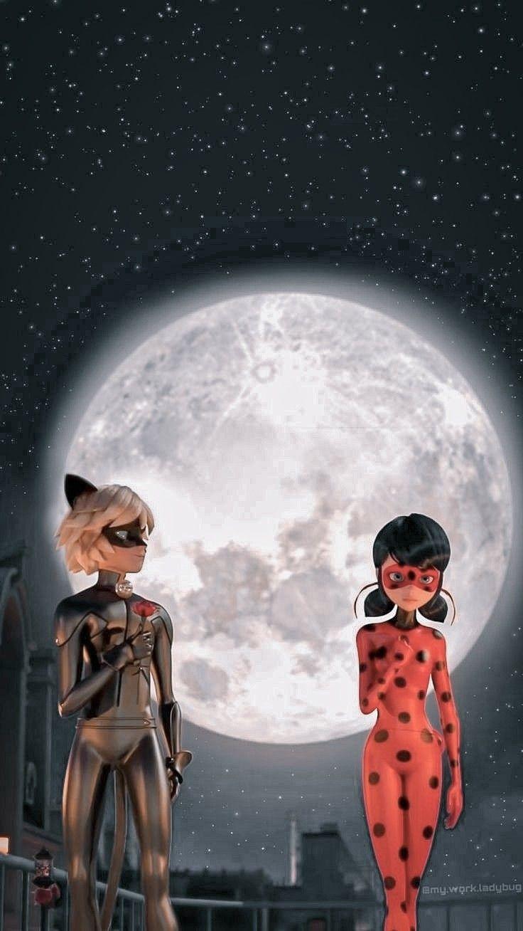 Wallpaper Miraculous - Ladybug e CatNoir