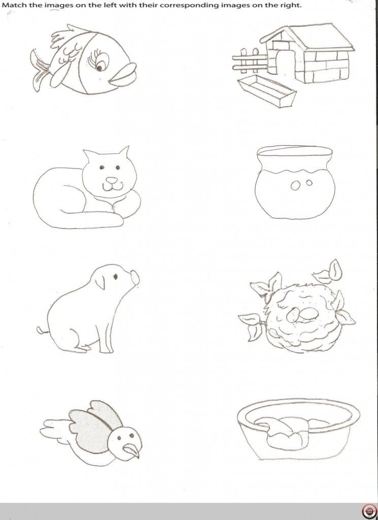 Matching Animals To Their Home Worksheet Crafts And Worksheets For Preschool Preschool Coloring Pages Animals And Their Homes Animal Classification For Kids