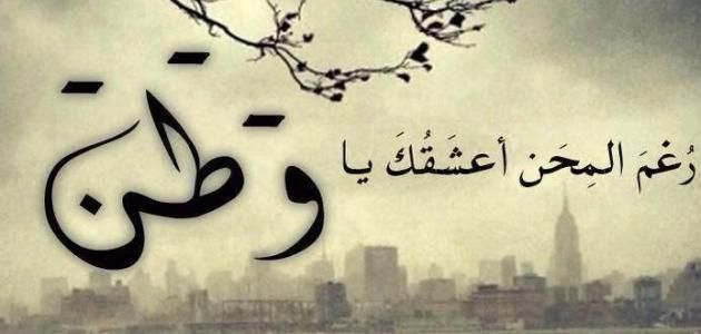 Resultat De Recherche D Images Pour امثال وحكم Calligraphy Art Arabic Calligraphy