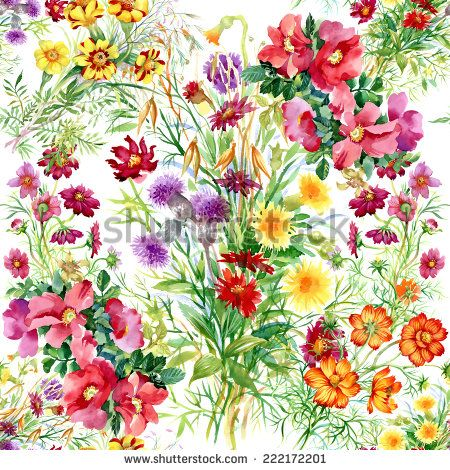 Wild flowers seamless pattern on white background vector illustration