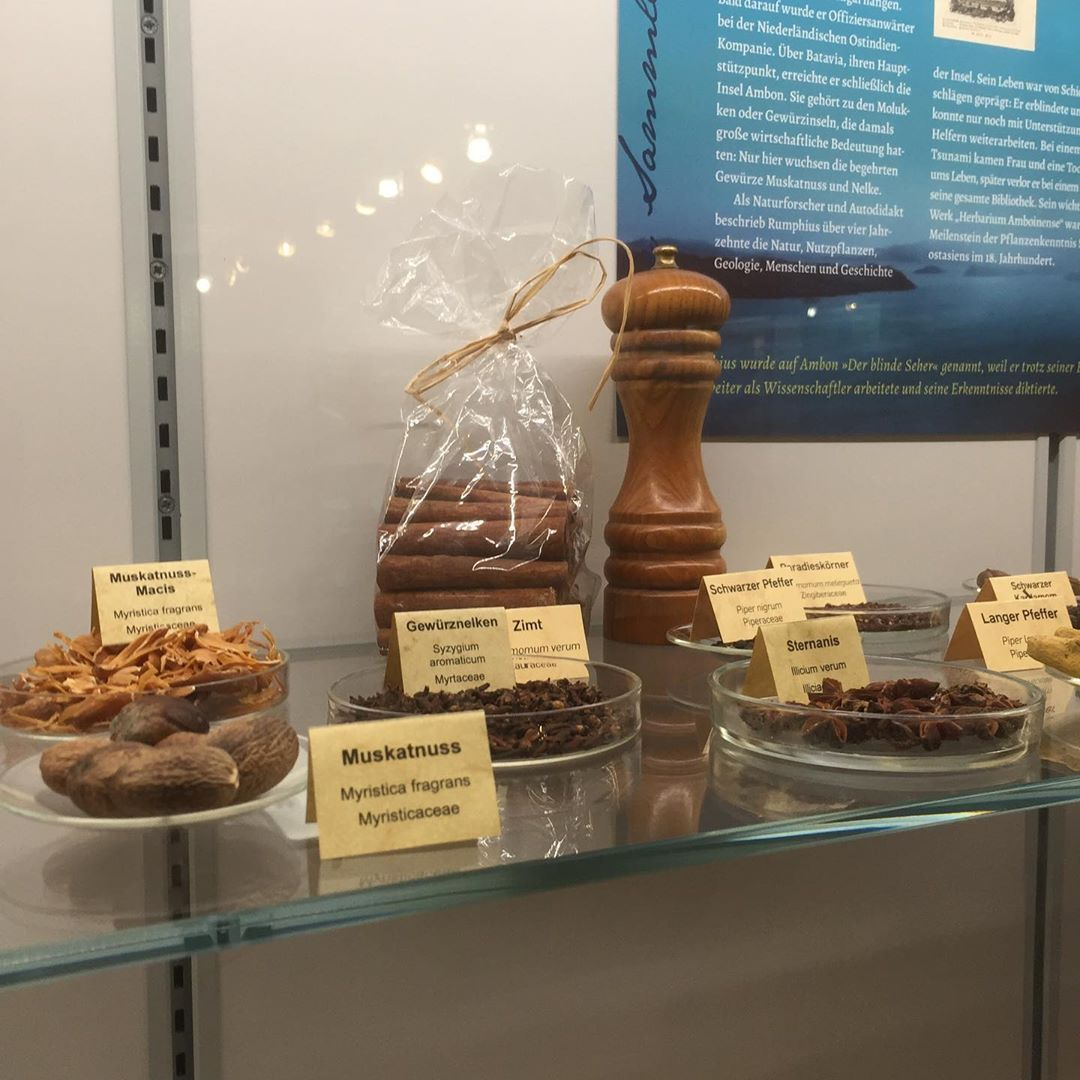 Ausstellung Botanischen Der Garten Interessante Ruhrunivers Schone Sehr Und Sehr Schone Und Interessante Ausstellung Im B Chess Board Home Decor Decor