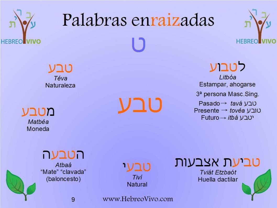 La Letra Tet Hebrewvocabulary