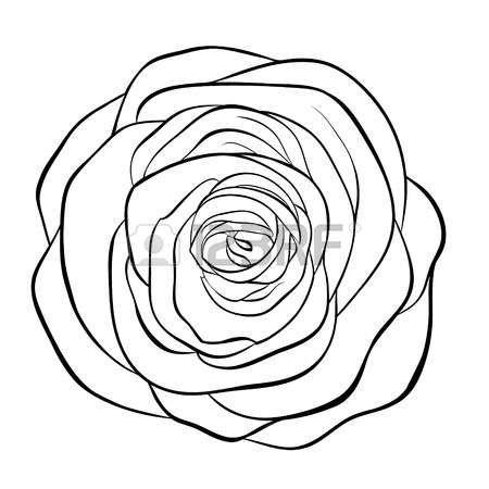 rose sch ne schwarz wei schwarz wei rose auf wei em hintergrund handgezeichnete konturlinie. Black Bedroom Furniture Sets. Home Design Ideas