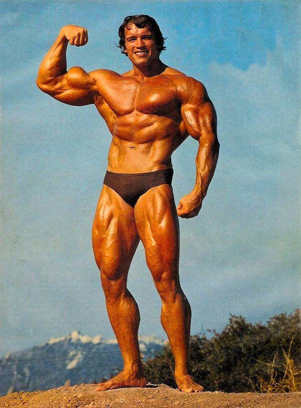 Arnold Schwarzenegger A Bodybuilding Profile Arnold