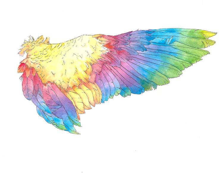 rainbow wing. watercolor and ink on paper. This was a gift for a dear friend.