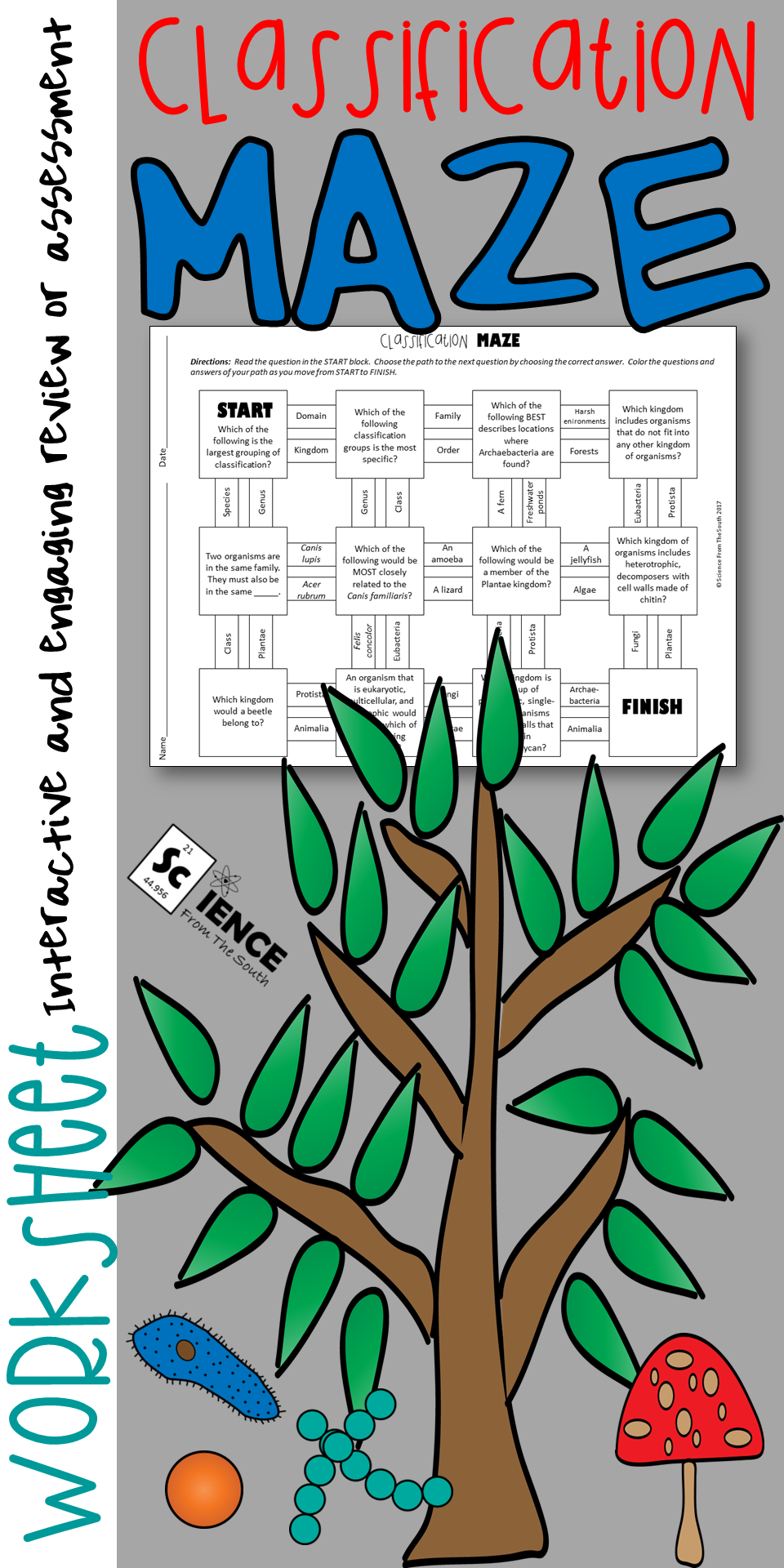 Classification of Living Things Maze Worksheet for Review