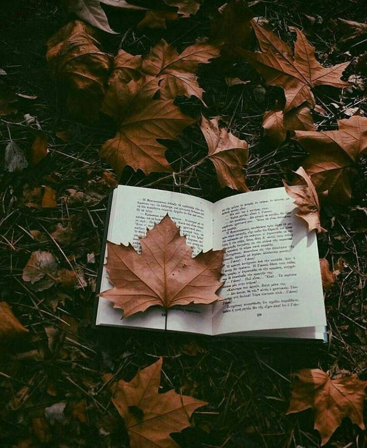 Fall Reading #moodboards