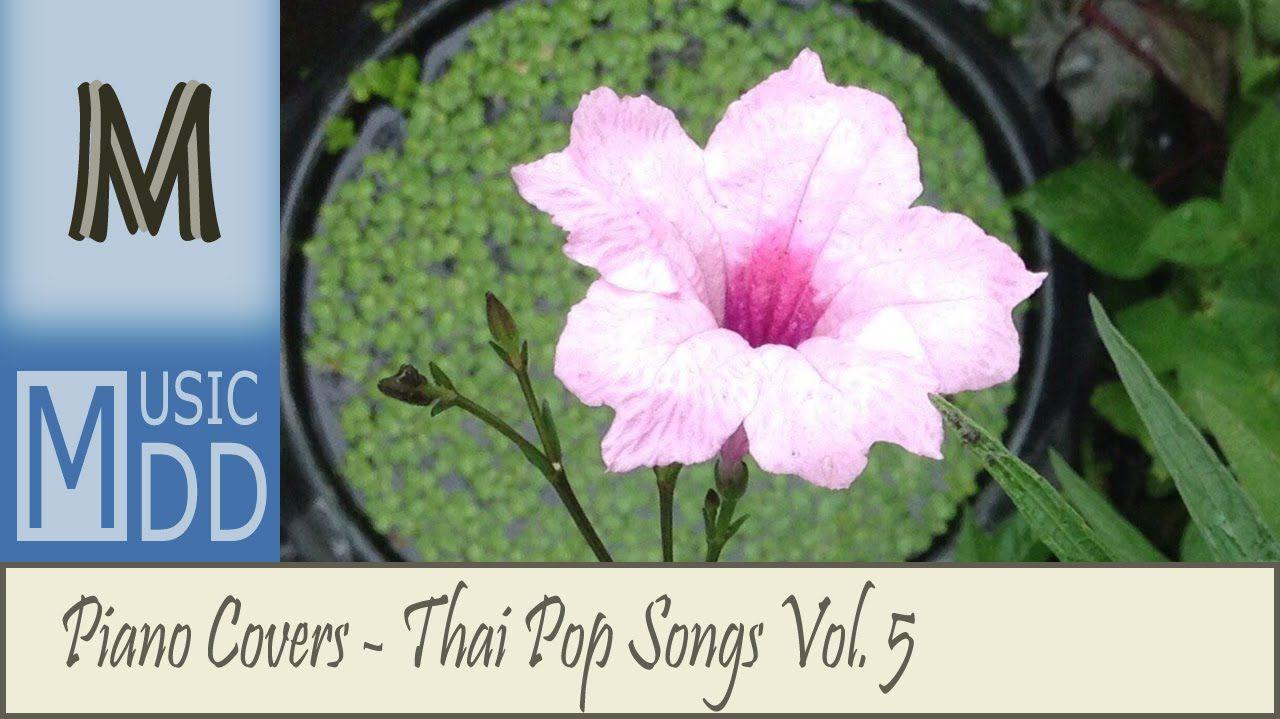 รวมเพลงดัง Cover เพราะๆ ติดหู ฟังเพลิน เปียโนบรรเลง Piano Covers Vol