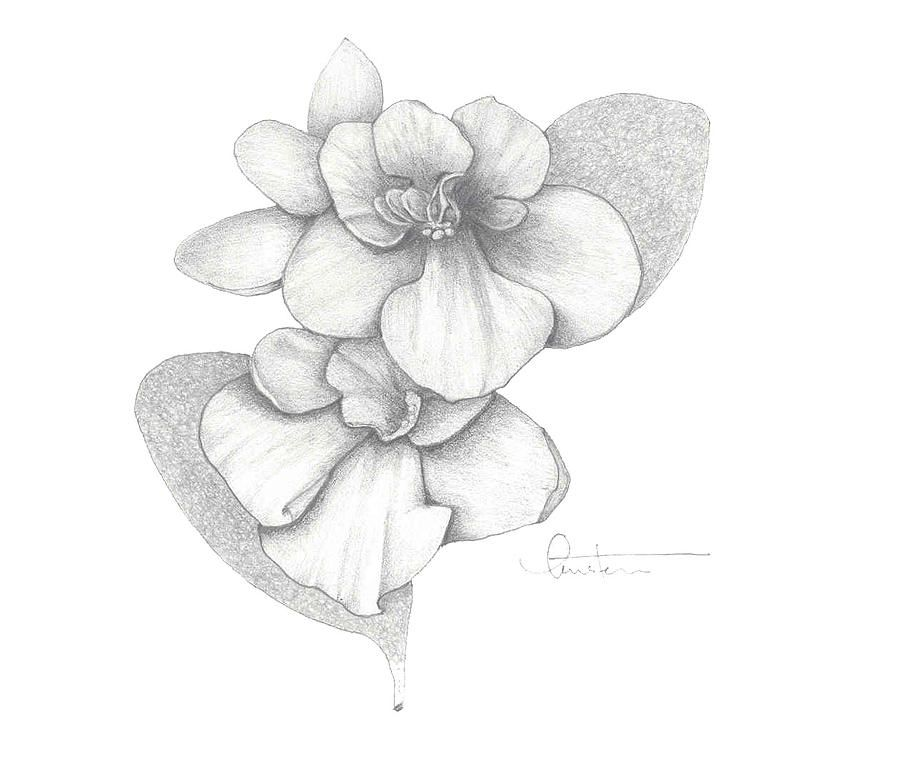 Drawings Of African Violets Google Search Tattoo Ideas