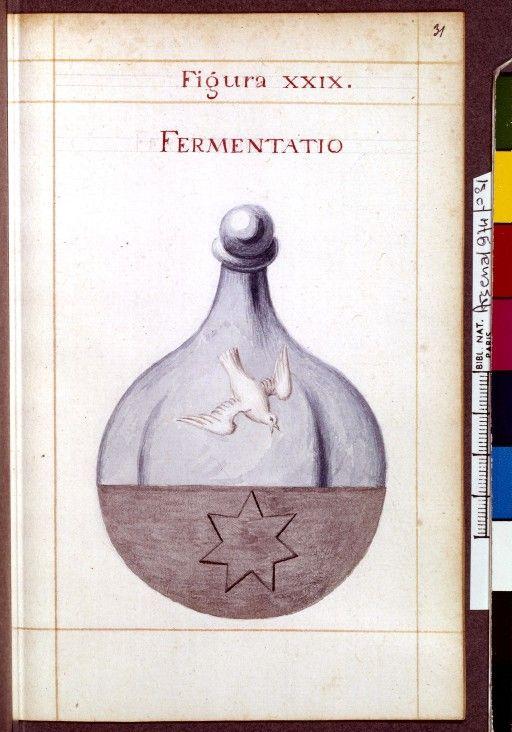 Figura XXVIX - Fermentatio - Sapientia veterum philosophorum, sive doctrina eorumdem de summa et universali medicina 40 hierogliphis explicata