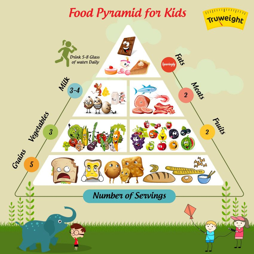 5 Building Steps of a Food Pyramid You Should Know Food