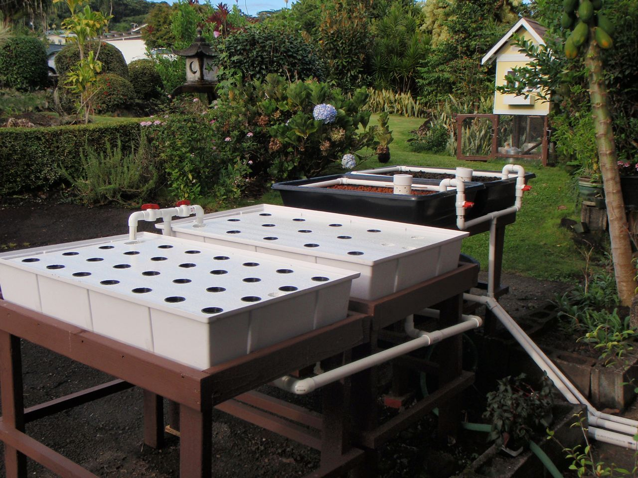 small raft system set up other aquaponics pinterest