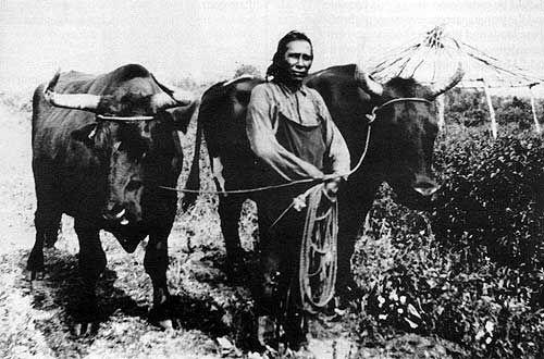 Aboriginal Farmer Manitoba