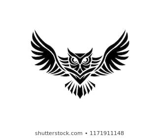 Owl Images, Stock Photos & Vectors