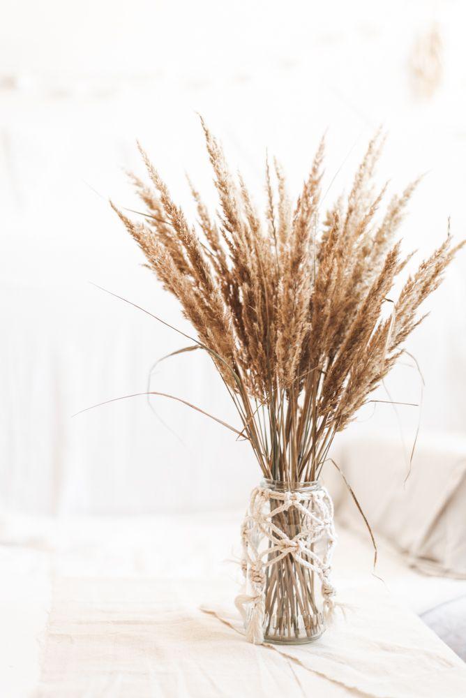 Nachhaltige Herbst Deko: Gräserkranz binden - Uponmylife