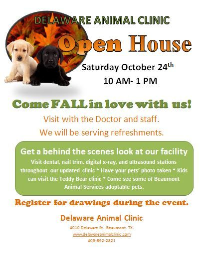 Veterinary Clinic Open House Pet Clinic Vet Clinics Veterinary Clinic