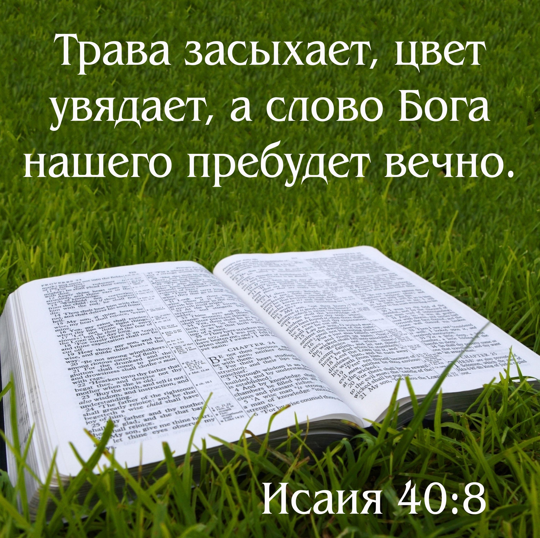 Сайт открытки с библии