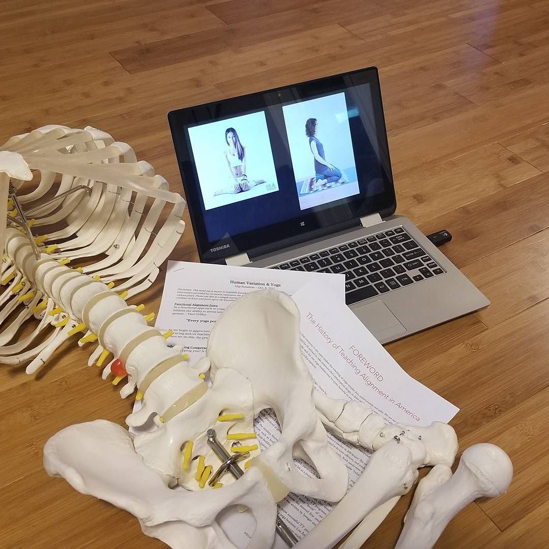 Geeking out getting ready to teach variation anatomy and functional ...
