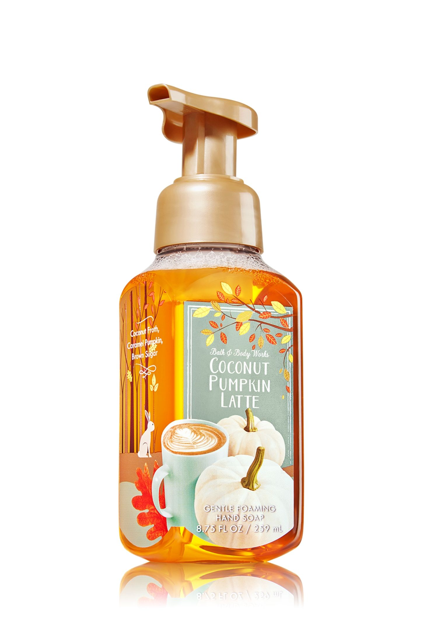Coconut Pumpkin Latte Gentle Foaming Hand Soap Soap Sanitizer
