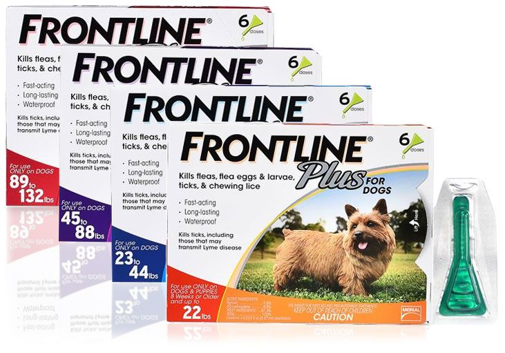 Picking A Flea Tick Medication For Your Pet Flea And Tick Tick Control For Dogs Frontline Plus For Dogs