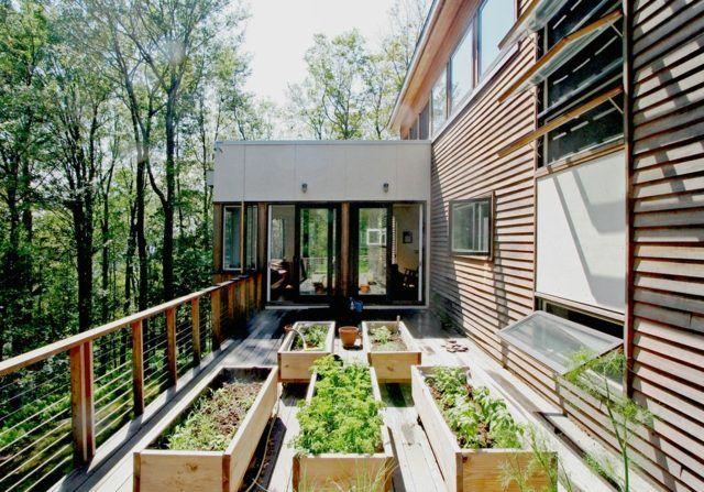 Moderner Kleingarten Balkon Gemüse Pflanzkübel | Ideas | Pinterest Balkon Gemuse Garten Anlegen