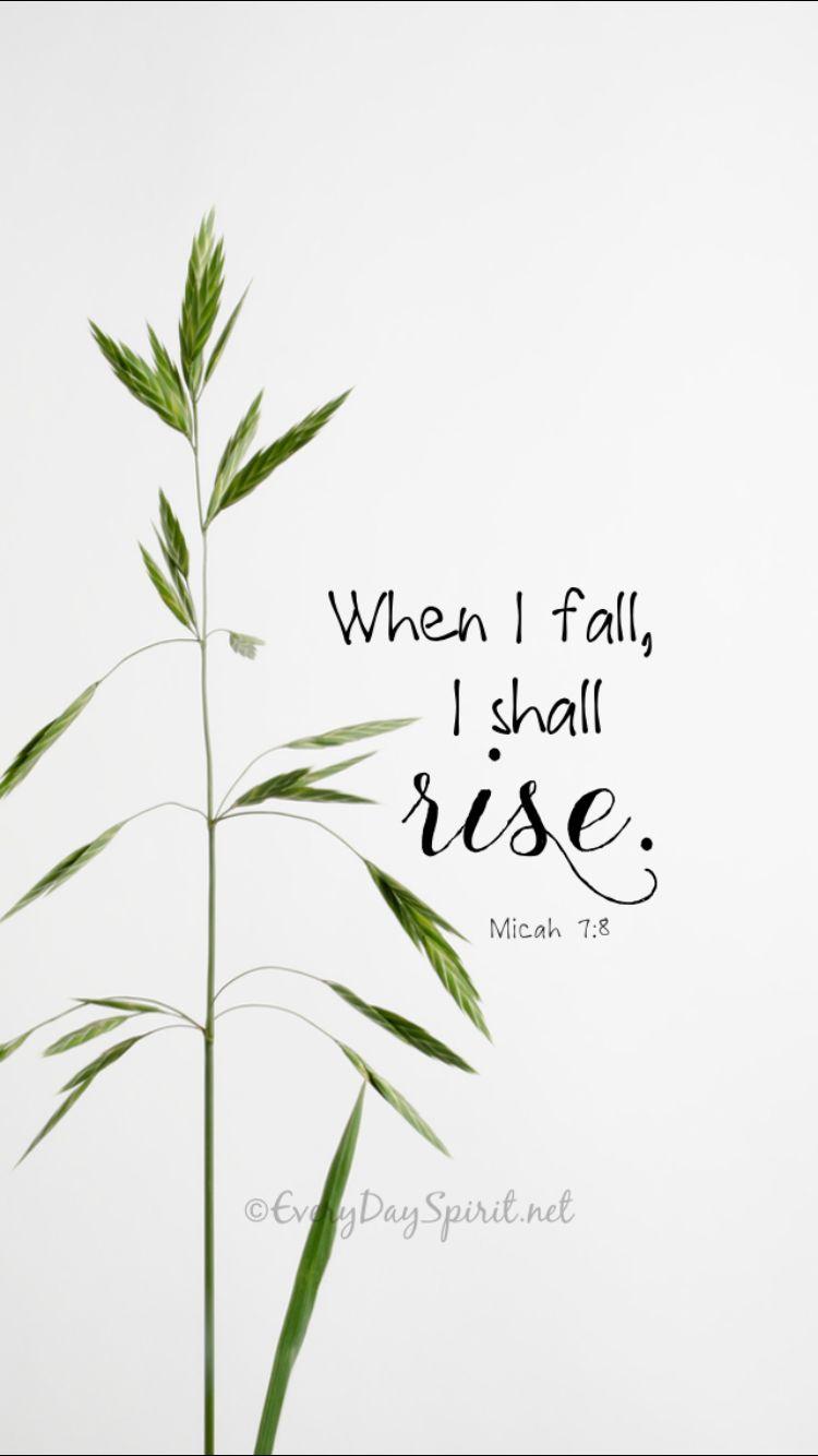 Miq. 7:8