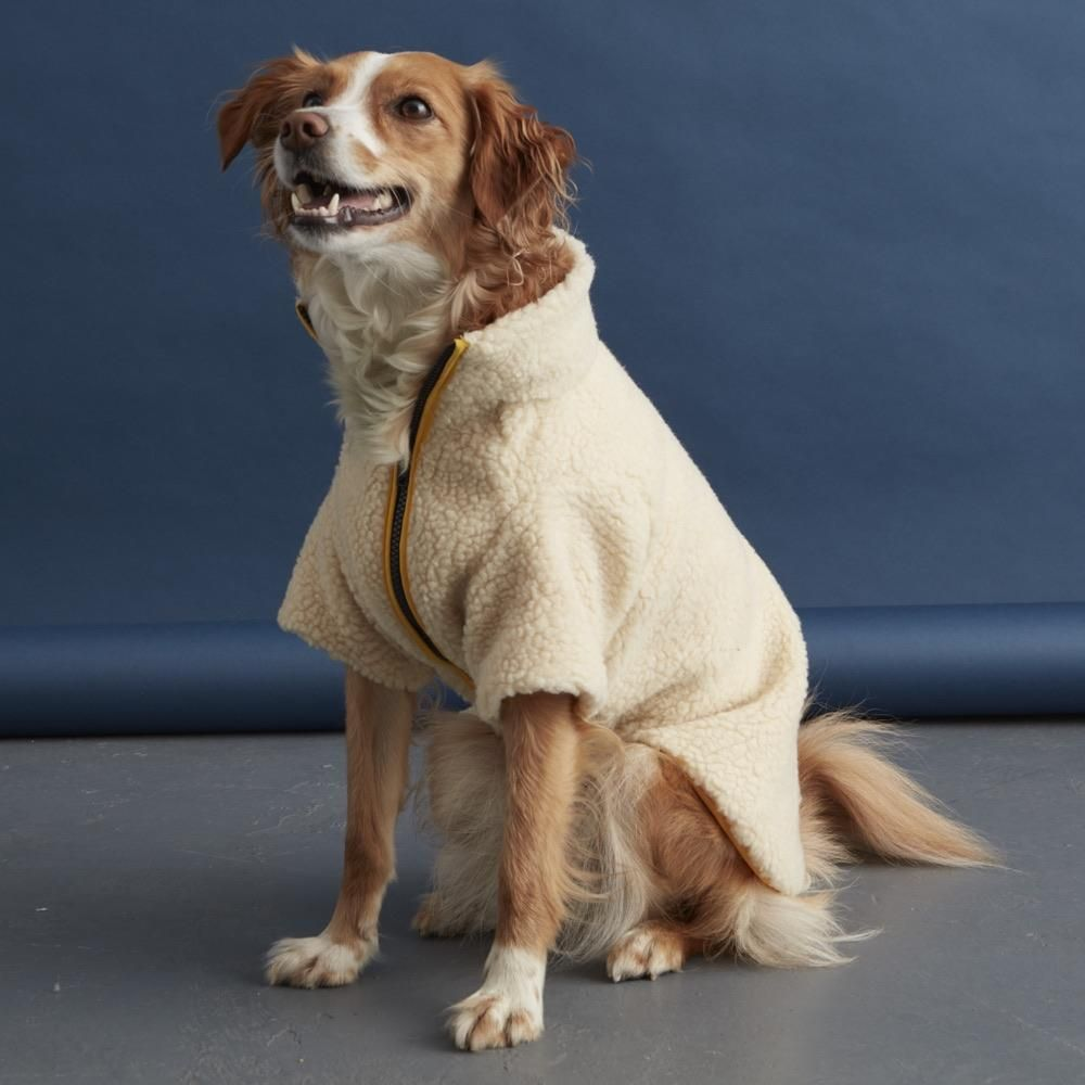 New This Beautifully Warm And Stylish Sherpa Fleece Dog Jacket By