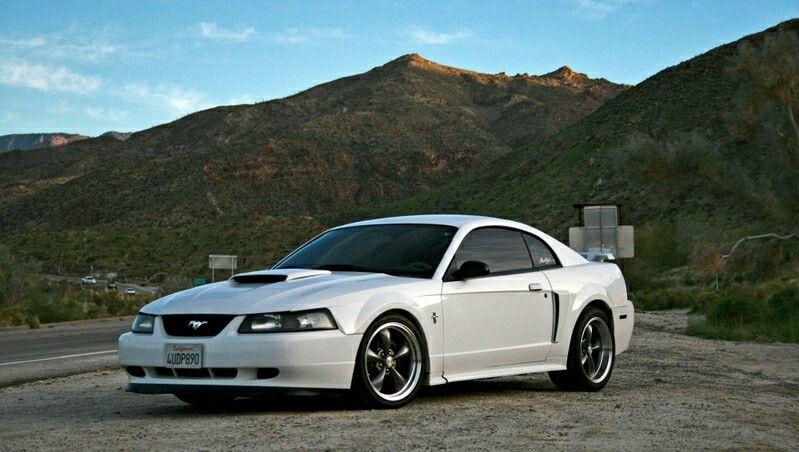 New Edge Mustang Gt