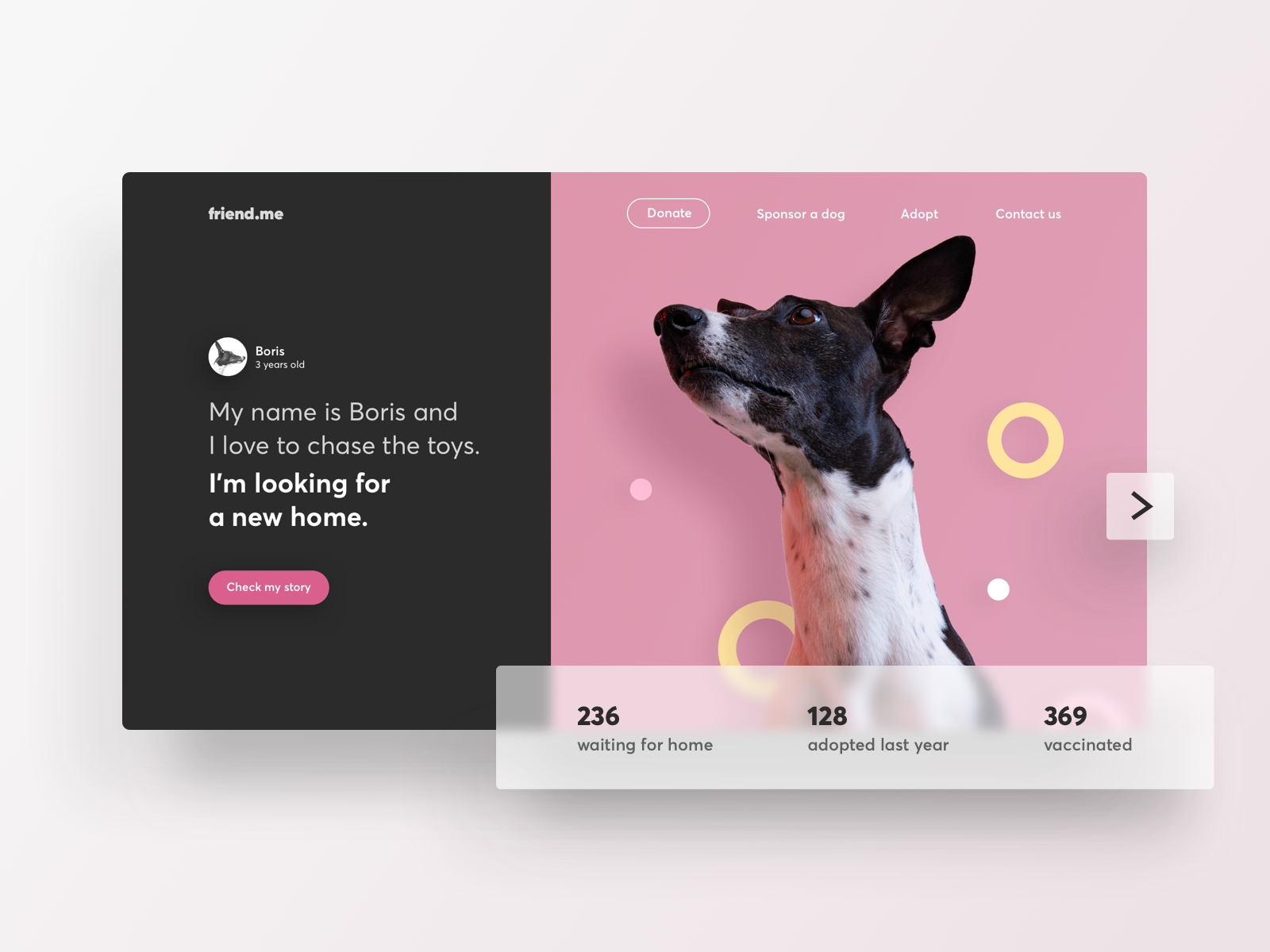Dogs Adoption Landing Page Pet Branding Adoption Website Design Inspiration