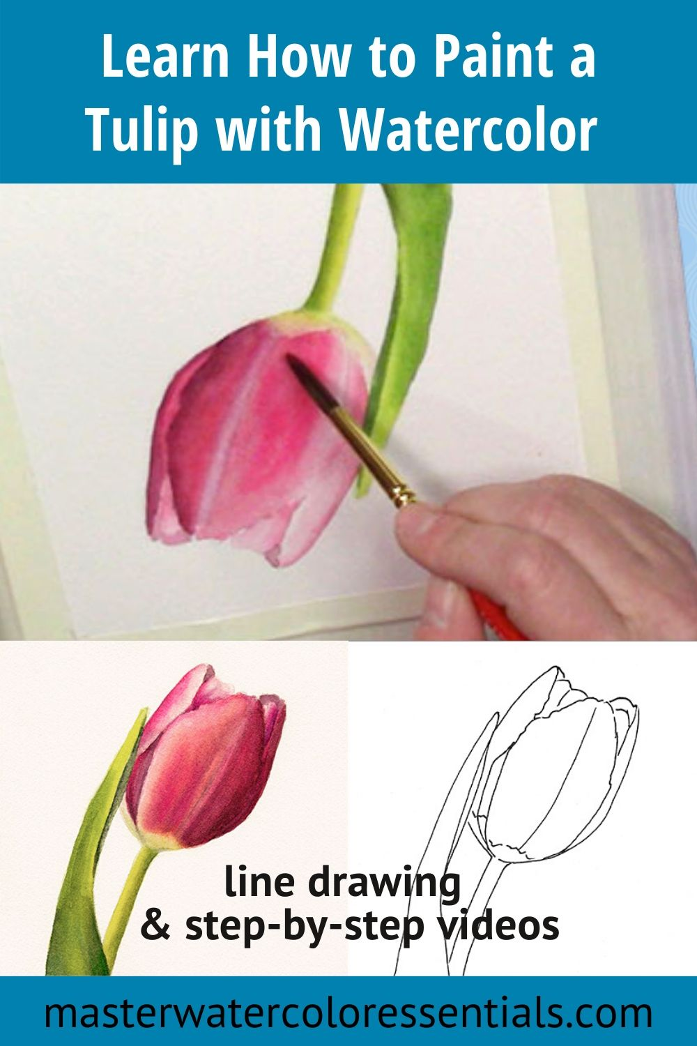 How to Paint a Tulip with Watercolor | Master Watercolor