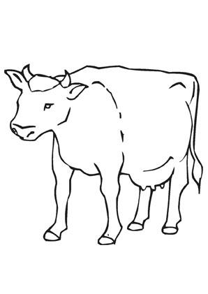 pin von tina auf kg bauernhof in 2020 | ausmalbild kuh