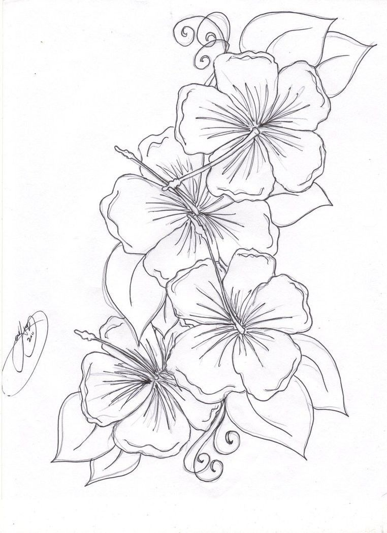 Hibiscus Flower Coloring Page Youngandtae Com In 2020 Hibiscus Flower Drawing Flower Drawing Hawaiian Flower Drawing