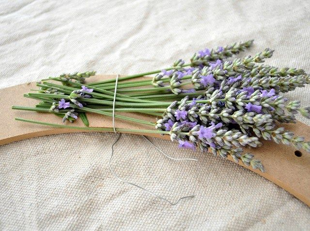 lavender-wreath-step-1.jpg (640×478)