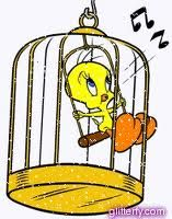 Tweety Bird in a cage | Bird in a cage, Tweety, Cat character