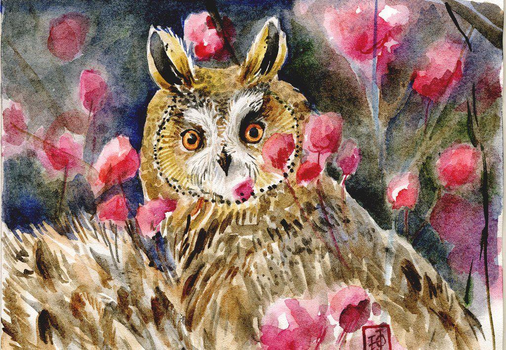 """""""Owl Blossom"""", illustration / Gufo tra i fiori, illustrazione - Art by Redilion on deviantART"""