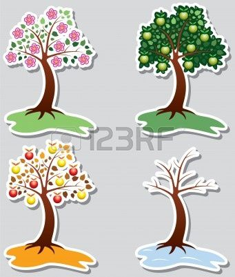 set of apple trees in four seasons