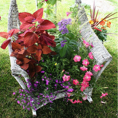 Hanging Baskets - Wicker DIY Projects - 10 Ways to Turn Old into New - Bob Vila