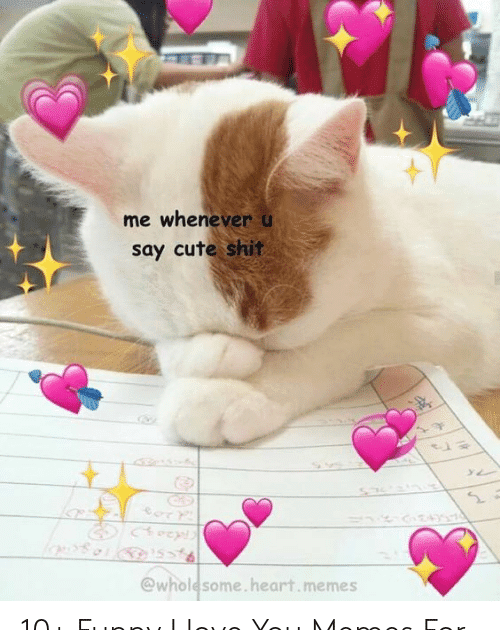 13 You Are Cute Memes Me Whenever U Say Cute Shit 10 Funny I Love You Memes For From Astrologymemes Com 25 B Love You Meme Cute Love Memes Love Memes Funny