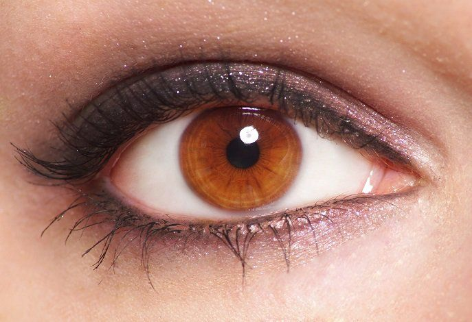 Light Brown Eyes Best Eyeshadow Colors For Brown Eyes