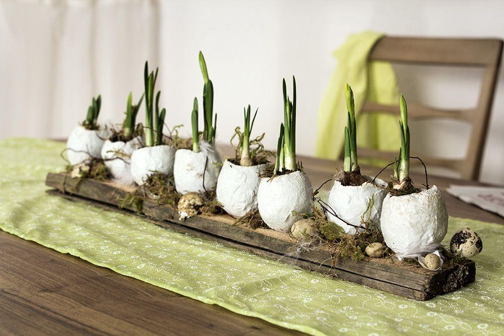 Bepflanzte Gipseier