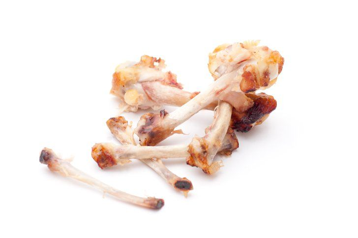 bones  eating raw chicken chicken bones dog eating