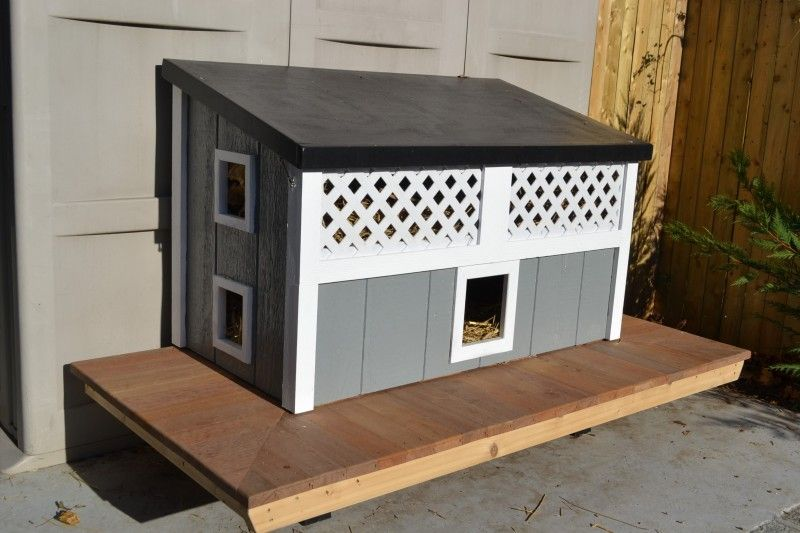 Feral Cat House Stray Cat The Patricia H Ladew Foundation Cats