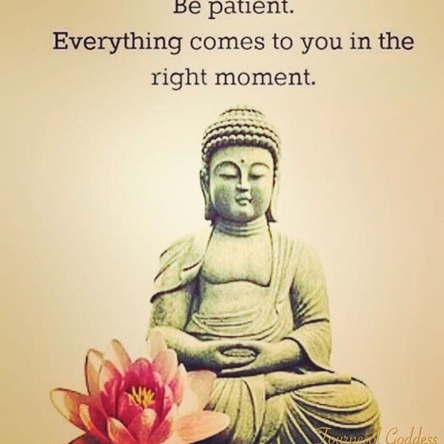 Top 100 buddhist quotes photos Patience conquers opposition. Annihilates obstacles. Gives confidence. 🌺  #patience #faith #liveinthepresent #allthingscomeintime #attherighttime #attherightmoment #buddhistquotes #namaste See more http://wumann.com/top-100-buddhist-quotes-photos/
