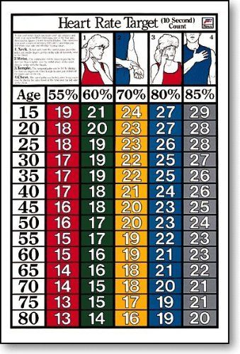 10 Sec Target Heart Rate Fitness Chart By Fitnus 1995 Large 24