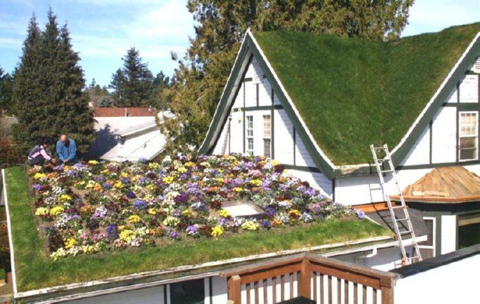 Green Roof On House Green Roof House Green Roof Green Roof System
