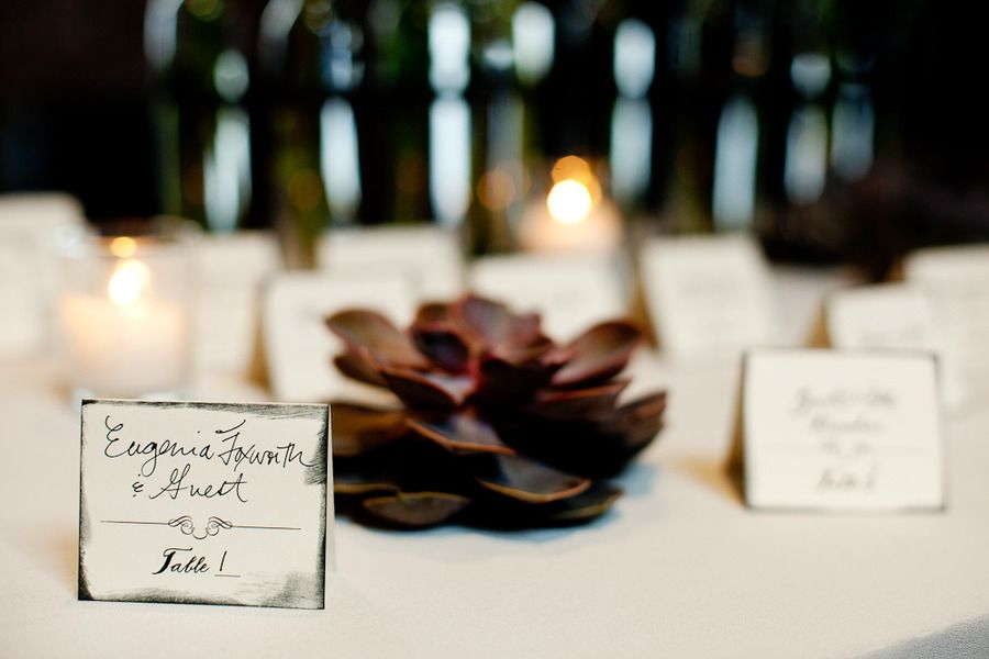 Long island city wedding by photo pink rock paper