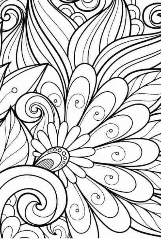 Adult Coloring Book Anti Stress Flowers Reduce And Relax With 55 Pages