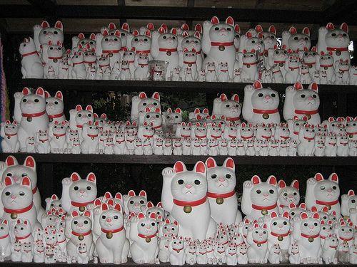 Gotokuji Temple (Beckoning Cat) by Japonica Morino Kuma, via Flickr
