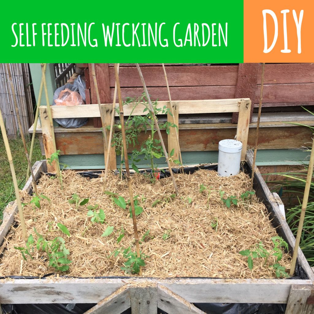 Self Feeding Watering Garden Beds