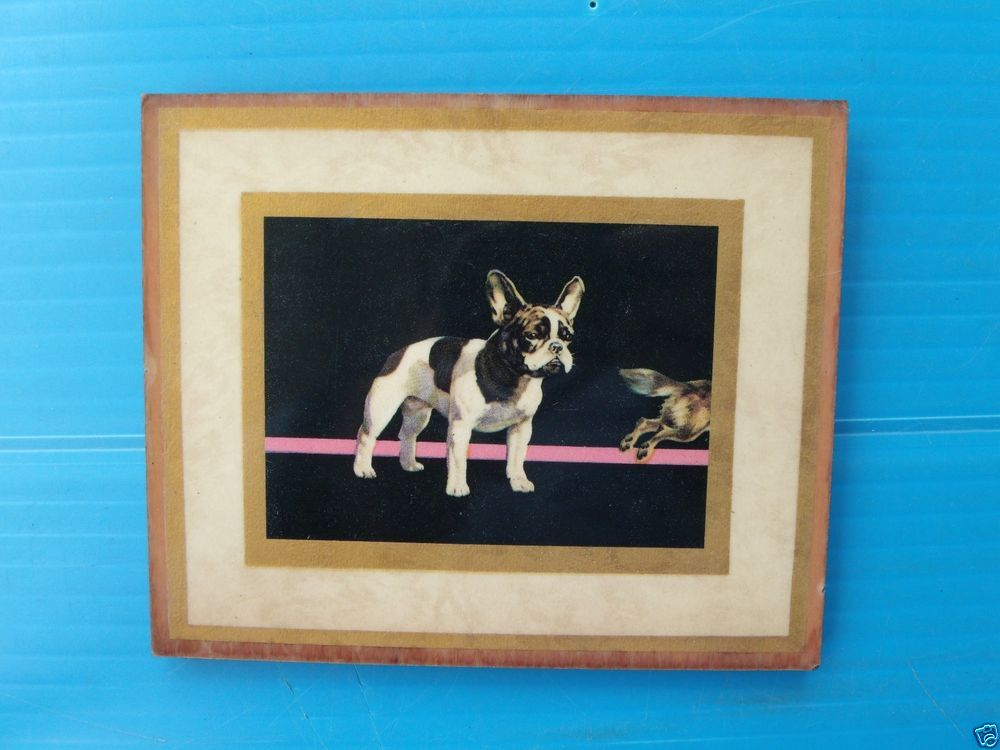 VINTAGE FRENCH BULLDOG DOG PRINT ON WOOD BOARD OLD 1940'S WALL HANGING